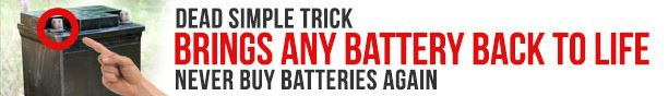 Recondition any dead old battery Easy to follow step-by-step course